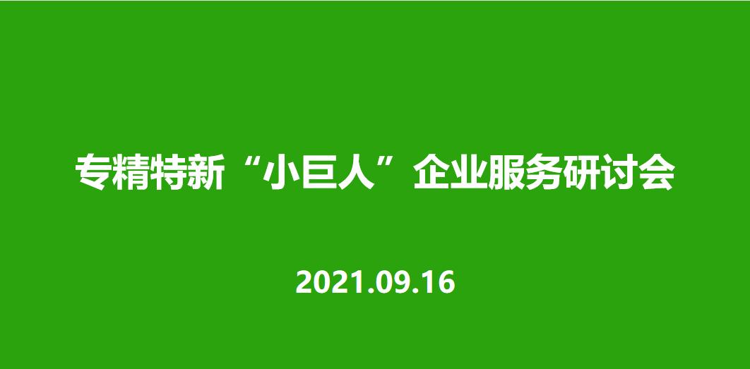 """曼顿公司组织召开专精特新""""小巨人""""企业服务研讨会"""